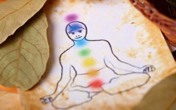 La medicina ayurvedica, i principi