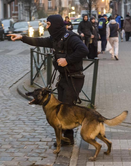 Molenbeek Vicino a Bruxelles, Belgio, poliziotti con cani