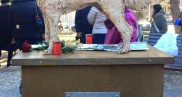 Inaugurata a Roma una statua dedicata ad Angelo, il cane torturato e ucciso in Calabria