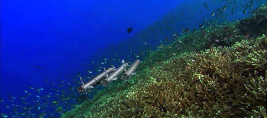 Sciami di robot per mappare il fondo marino