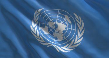 MiSE, la risoluzione presentata all'ONU è una minaccia per il made in Italy agroalimentare