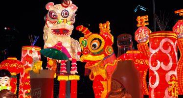 Anno cinese del maiale: è davvero un problema per i musulmani?