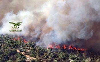 Sardegna a fuoco. Evacuate case e campeggi. Le foto