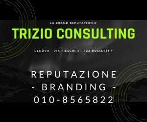 Trizio Consulting