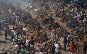 India. La situazione del Covid